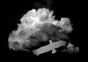 photo montage illustration barcode eagle and cloud